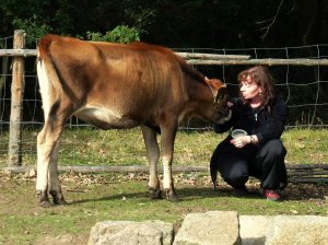 Woman talking with cow.
